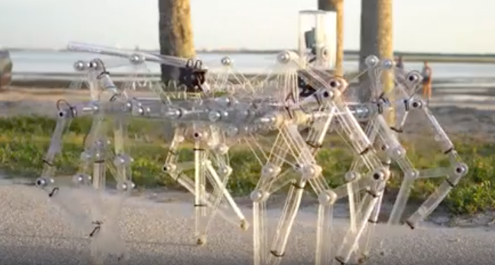 """Contraptions Guy"" Jeremy Cook and his Strandbeests"